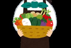 【正しい野菜の保存方法】必要な厨房機器は東京の買取業者を利用して!